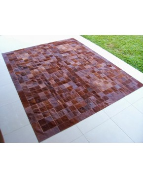 Brown Cowhide Rug with Border X019
